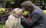Marrying a dog