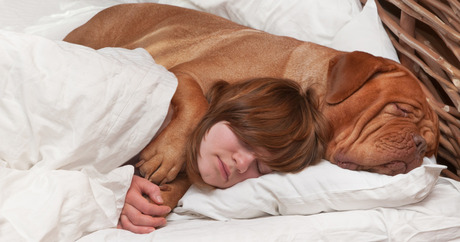 file_17258_column_should-i-sleep-with-my-dog
