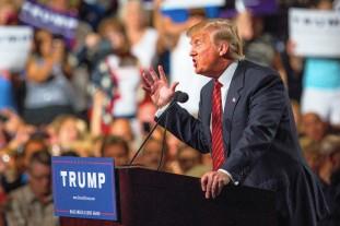 Trump - Bold and Brash