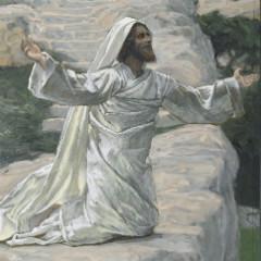 Apostle James -